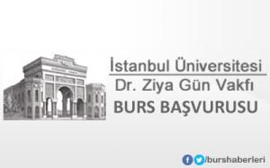 İstanbul Üniversitesi Dr. Ziya Gün Vakfı Burs Başvurusu Başladı!